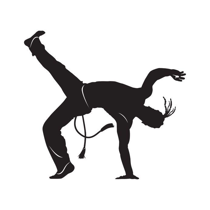 לחימה משולבת-MMA